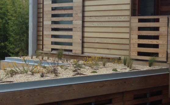 Living & Green Roof Waterproofing